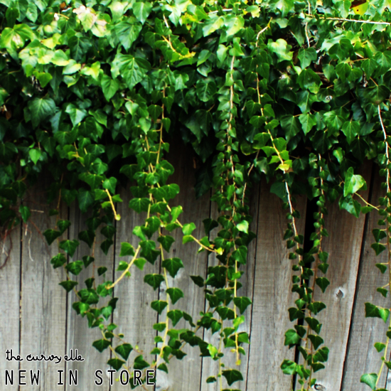new_in_ivy